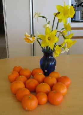 daffodils and clementines